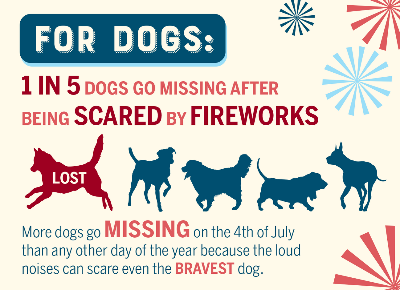 1 in 5 dogs go missing after being scared by fireworks. This is a small graphic explaining this.